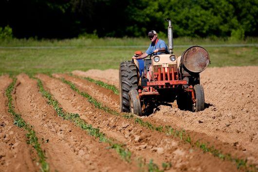 Egyszerűsödik a traktorok műszaki vizsgája