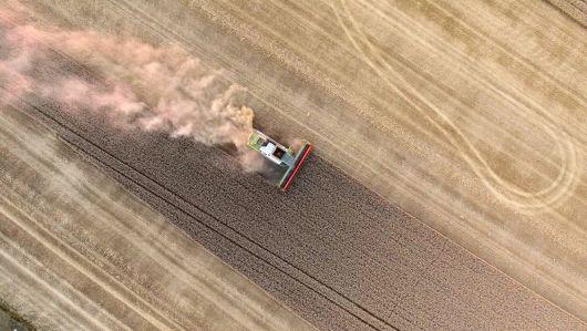 RMDSZ: csökkentjük a bürokráciát a mezőgazdasági beruházások esetén