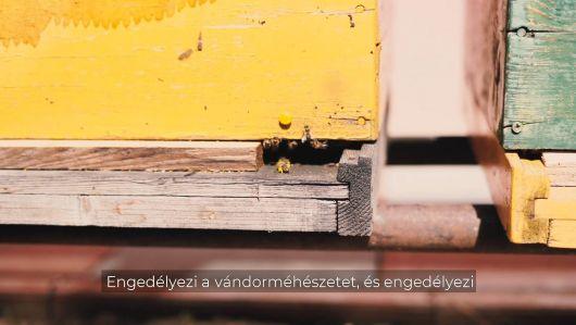 Tánczos Barna: Jó hír a méhészeknek!