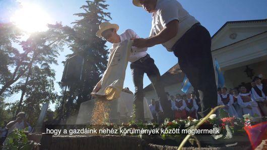 A székelyföldi búzaösszeöntés ünnepén Csernátonban